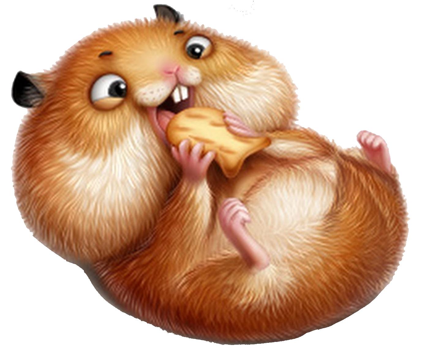 Смешные рисунки про хомяков